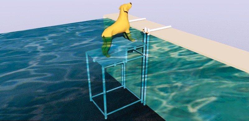Escada para Pet com dois degraus - para piscinas com nível de água acima dos 10cm