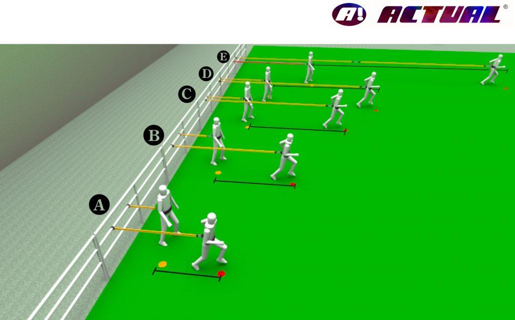 diagrama da extensão dos elasticos mais comuns da Actualsports